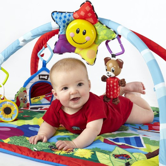 baby-einstein-play-gym
