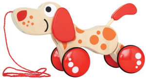hape-walk-a-long-toy